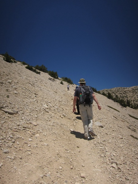 Mt San Gorgonio  Summit Hike  12